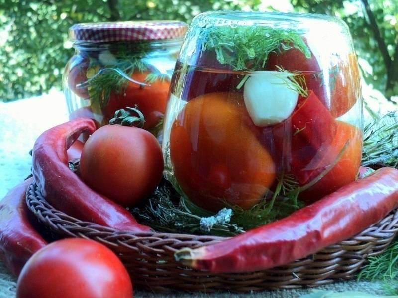 Рецепт маринования помидор заготовки кубанские разносолы. как мариновать помидоры в банках на зиму