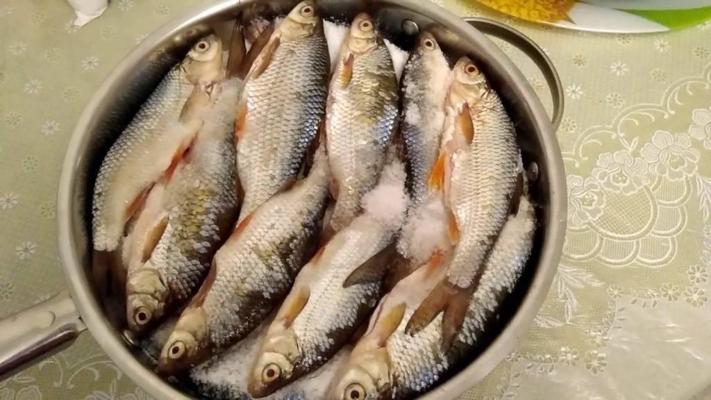 Как правильно солить речную рыбу   здоровое питание