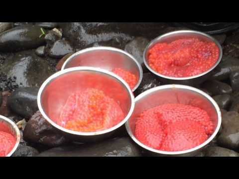 Эксперты: как отличить имитированную красную икру от настоящей