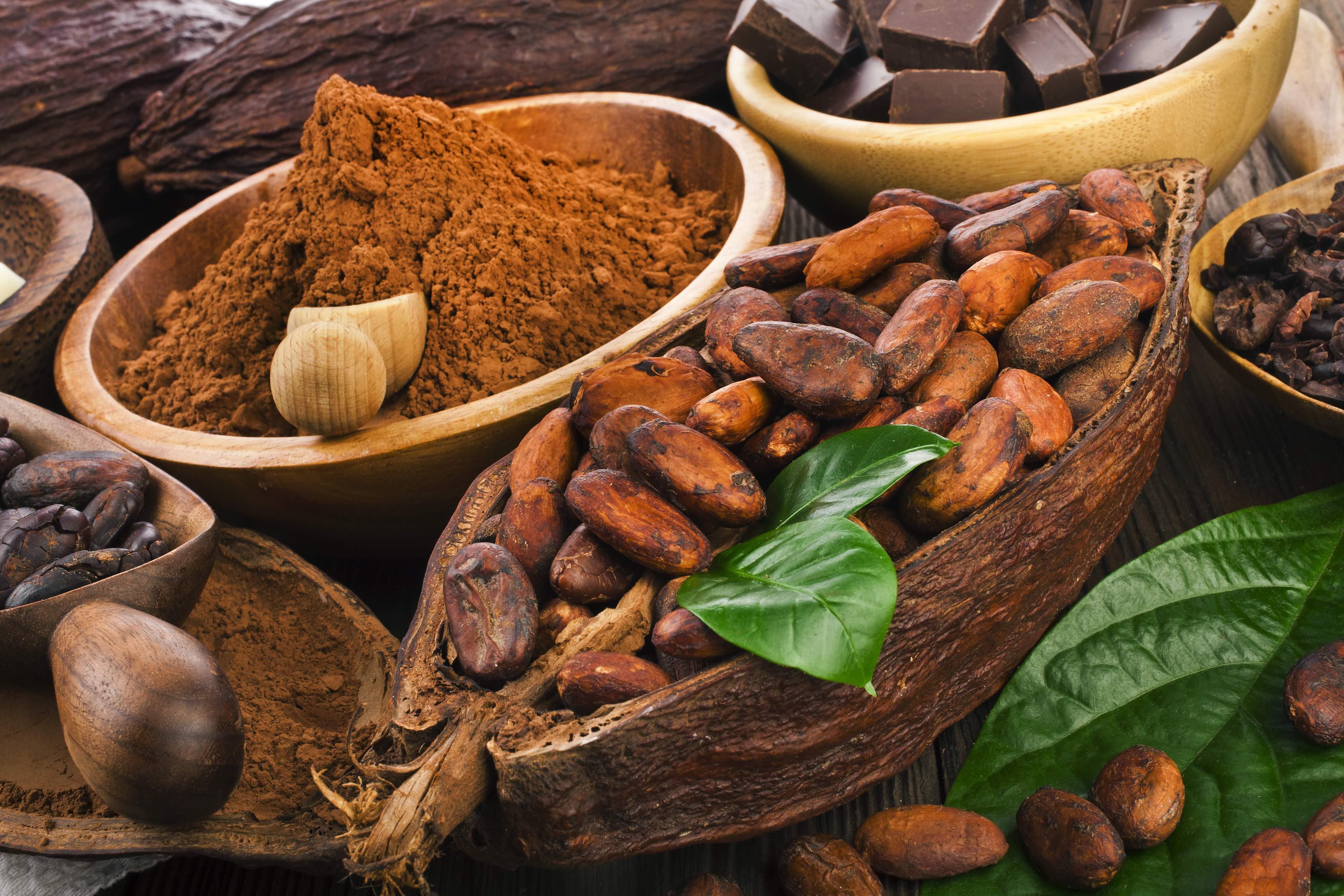 Какао-бобы: полезные свойства, использование, противопоказания | лайфхаки, идеи и полезные советы
