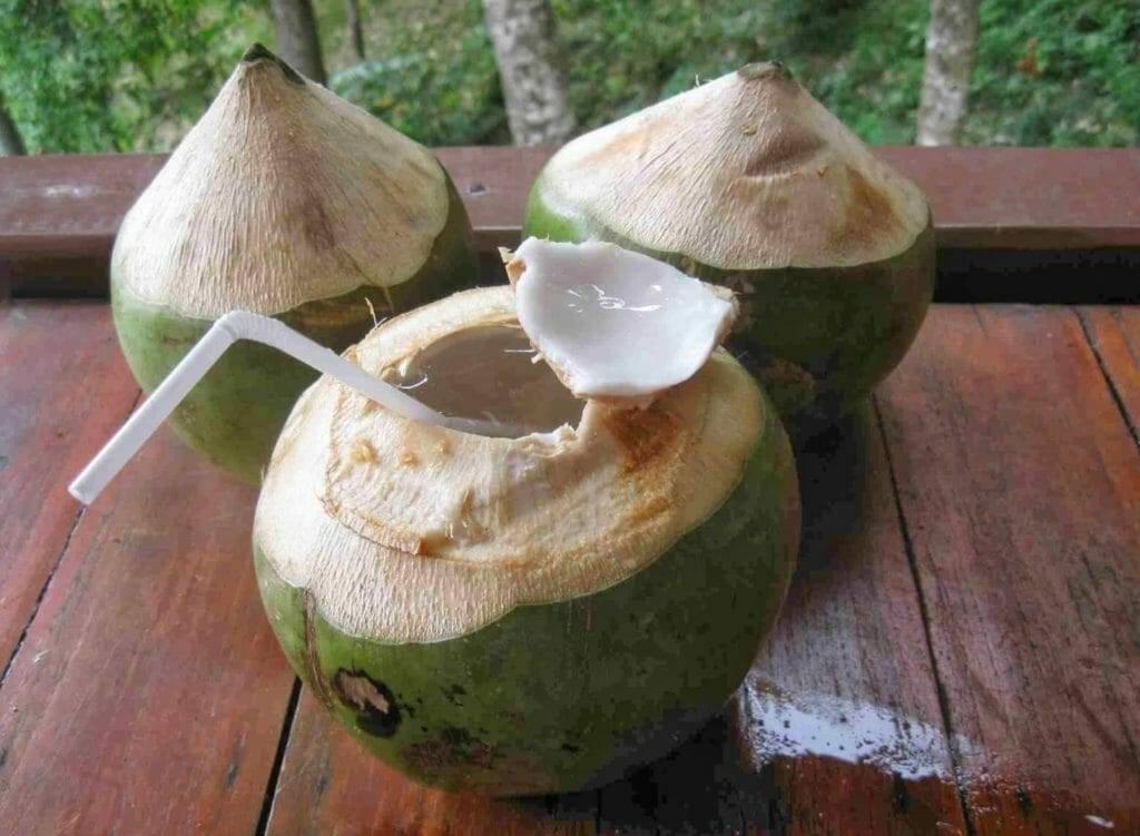 Коксовый сок или вода: откуда берется, сколько в кокосе и в чем польза для организма, какие свойства, есть ли противопоказания, а также состав и калорийность