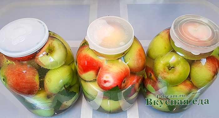Моченые яблоки по старинному рецепту. | здоровое питание