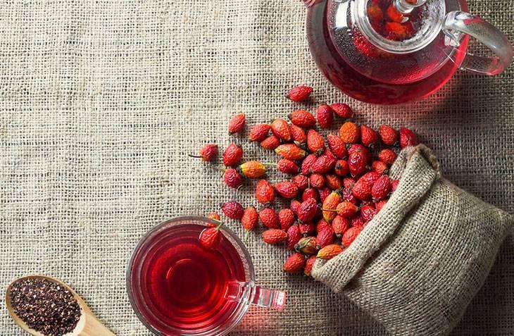 Как и зачем заготавливать шиповник на зиму? сбор и сушка плодов, приготовление чая. фото — ботаничка.ru