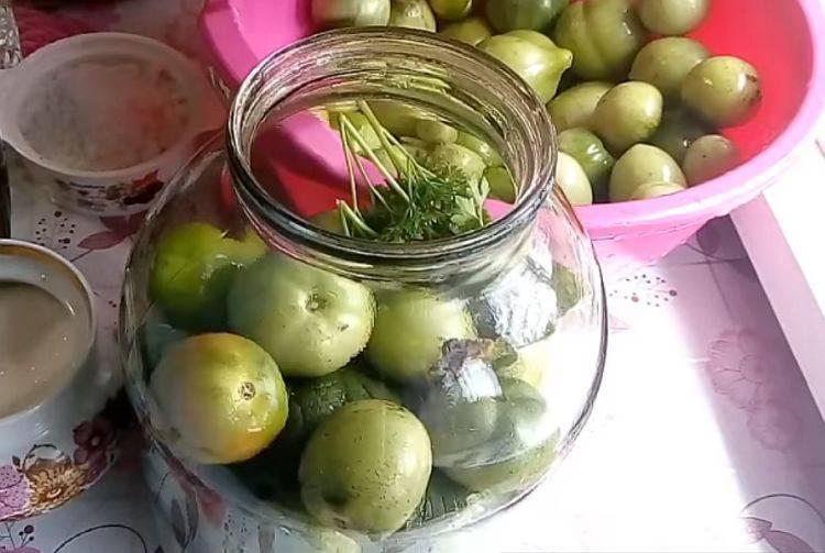 Квашеные помидоры (как бочковые) в домашних условиях
