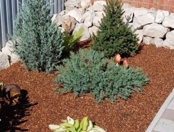 Листья грецкого ореха как удобрение для сада: польза и рецепт компоста
