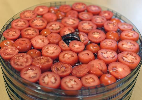 Когда зреют помидоры в краснодаре