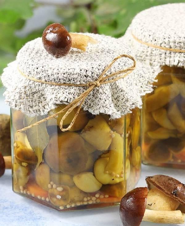 Маринад для грибов - как вкусно приготовить для быстрого маринования или банках на зиму