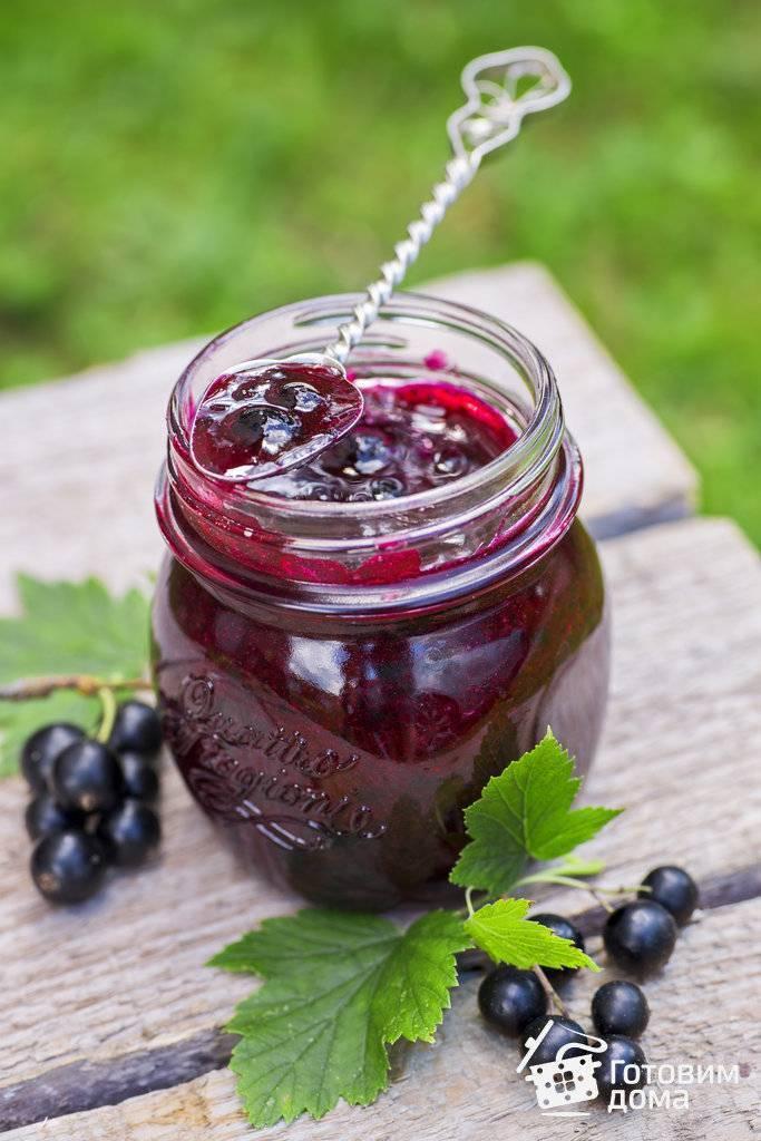 Черная смородина протертая с сахаром: 5 рецептов