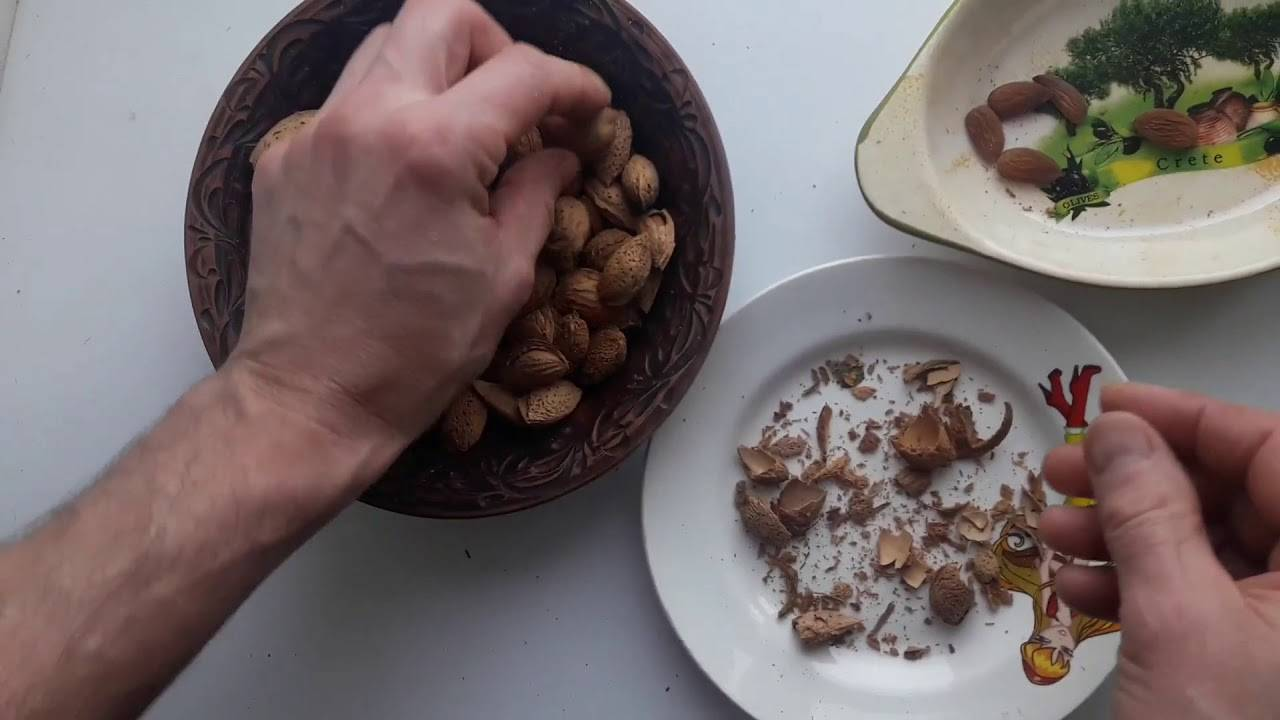 Как быстро очистить миндаль от шелухи, кожуры, скорлупы, можно ли и как снять шкурку с ядра в условиях дома вручную, что нужно сделать, чтоб орех легко кололся?
