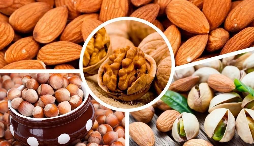 Орехи при запорах можно или нет - лучший огород
