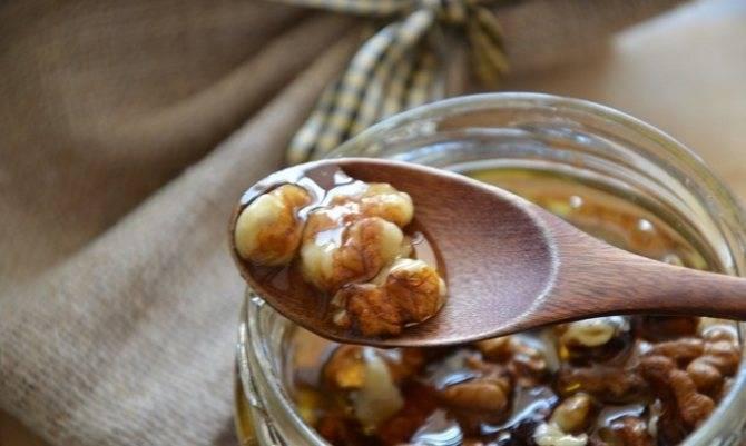 Грецкие орехи с медом: польза и вред, рецепты для мужчин и женщин
