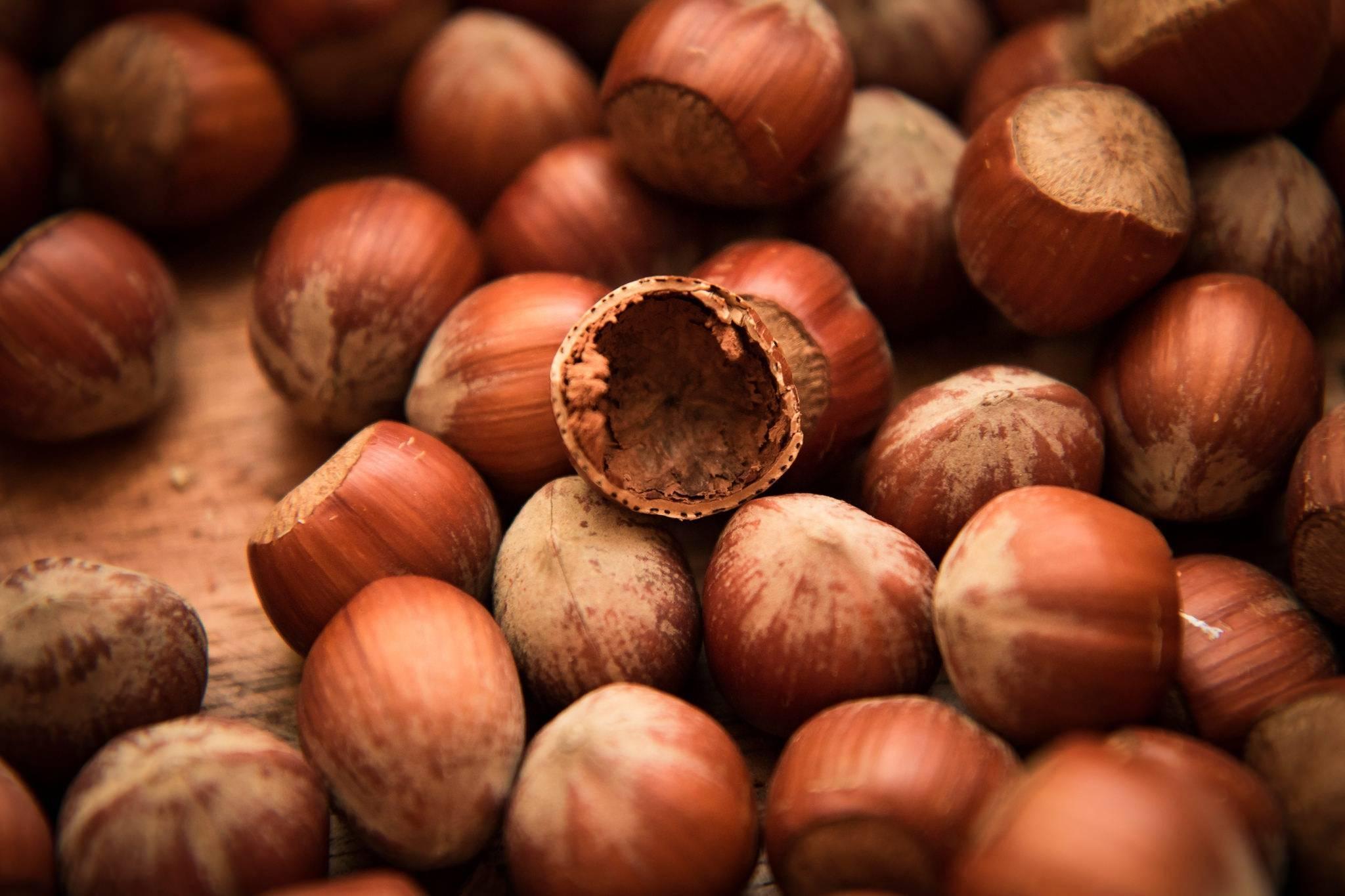 К чему снится орех во сне — по 90 сонникам! если видишь во сне орех что значит?