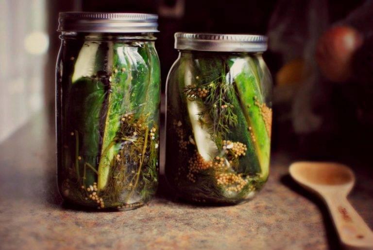 Засолка огурцов на зиму с уксусом: хрустящие огурцы в литровые банки, рецепты