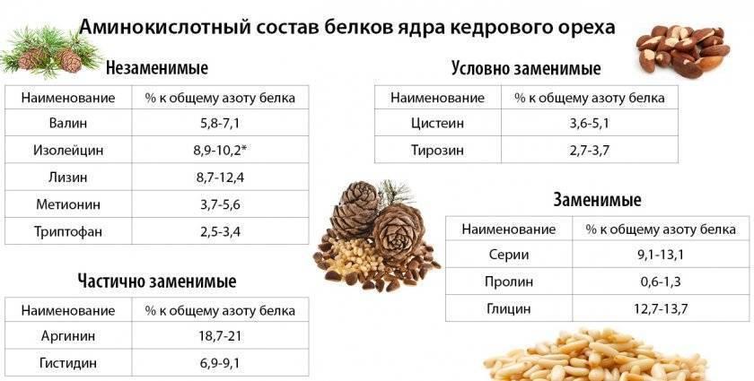 Можно ли употреблять кедровые орехи при беременности?