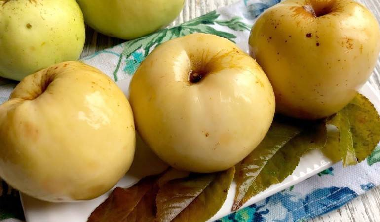Мочёные яблоки, рецепт в домашних условиях, в бочке, ведре, с горчицей и тыквой, мятой, капустой