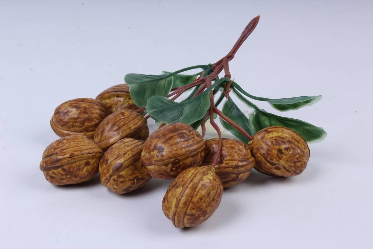 Сорта грецкого ореха для казахстана, узбекистана, кыргызстана