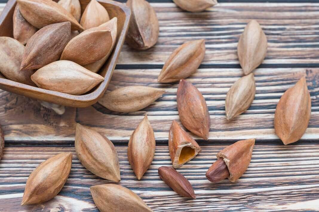 Орех пекан: польза, вред, состав, калорийность, норма в день | здоровье и красота
