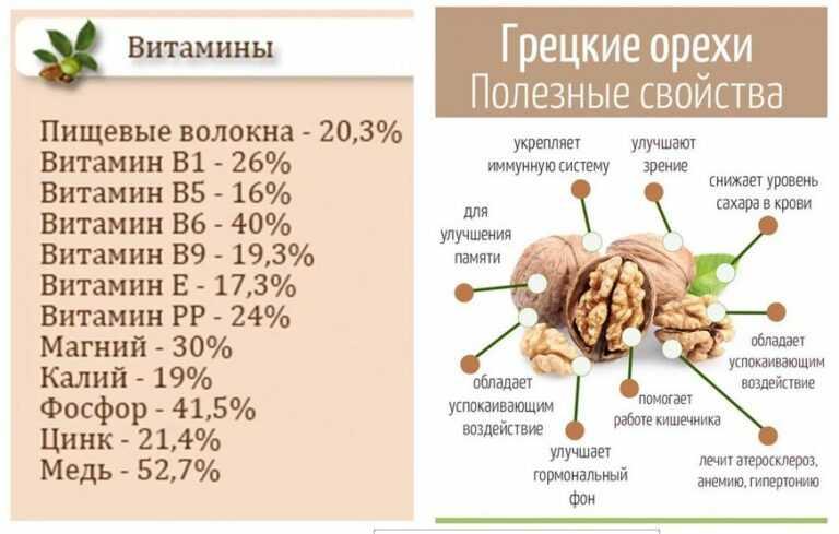 Молдавские сорта грецкого ореха — портал ореховод