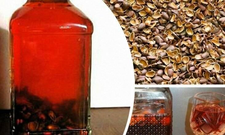 Самогон на кедровых орешках: рецепты настойки, польза и вред
