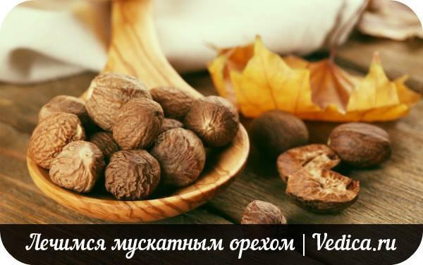 Мускатный орех: наркологические свойства, как употреблять, эффект