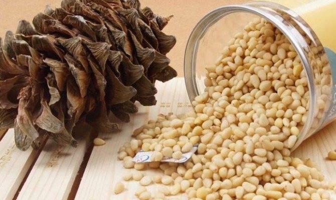 Можно ли есть кедровые орехи во время беременности?