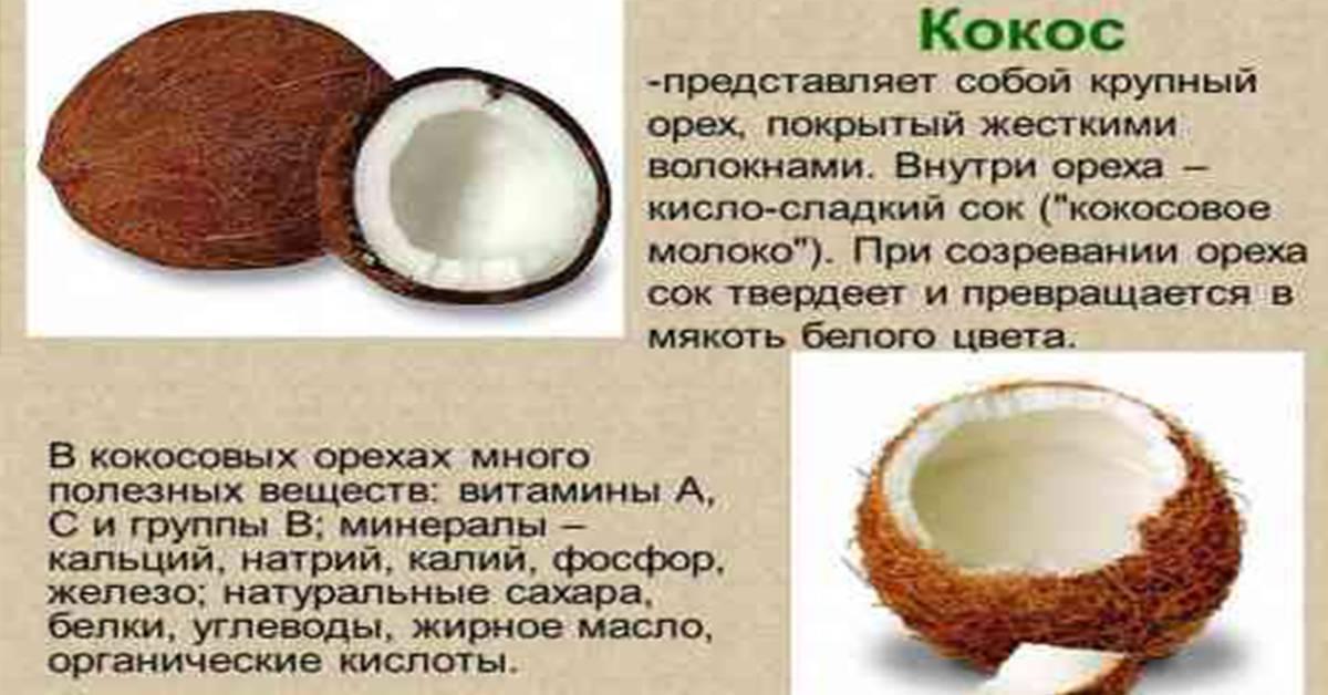 Кокосовая вода (сок): полезные свойства и рецепты