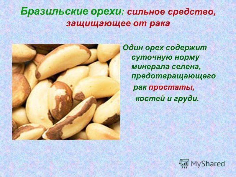 Польза бразильского ореха и его вред: состав, нюансы употребления и противопоказания