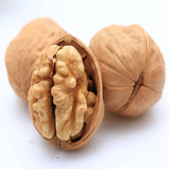 Пекан - орех похожий на грецкий, что за плод - орех эксперт