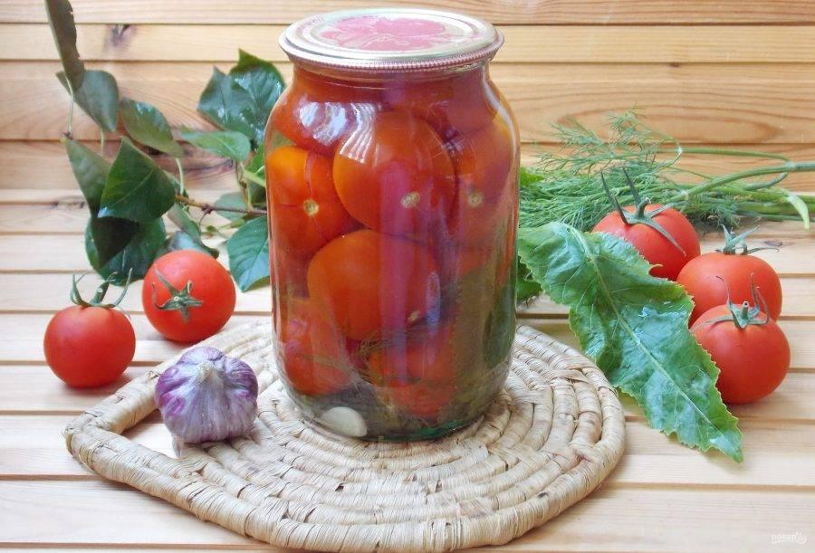 Малосольные помидоры — 8 рецептов быстрого приготовления