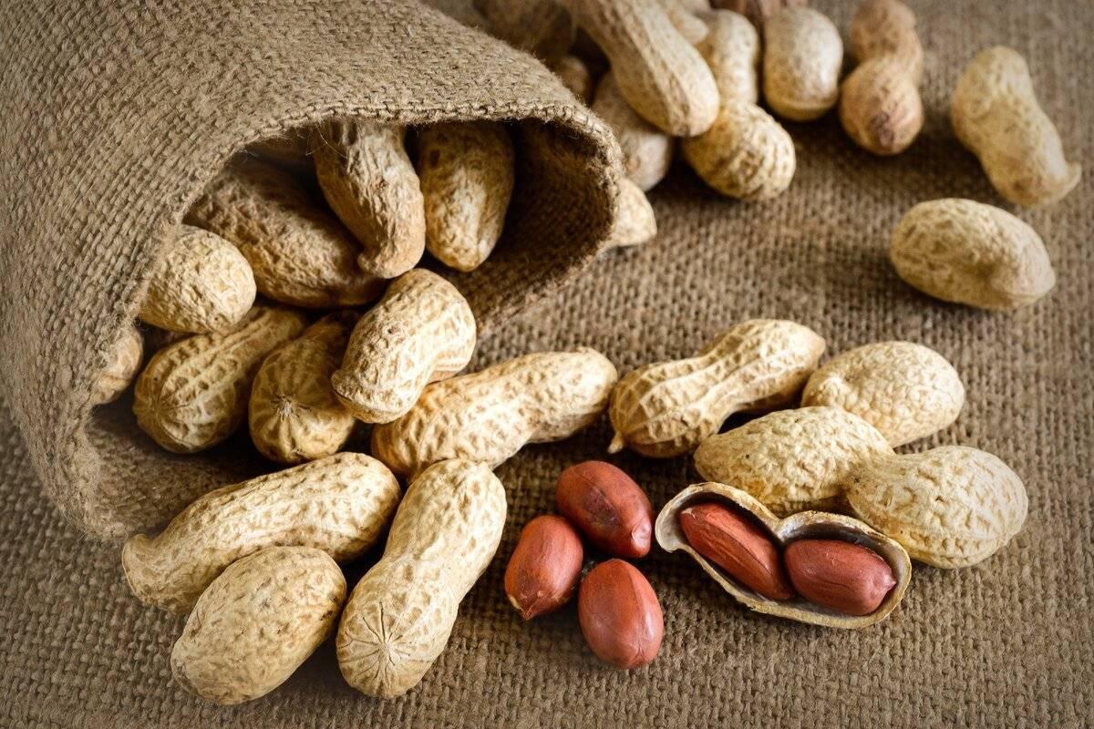 Что такое арахис: происхождение, виды