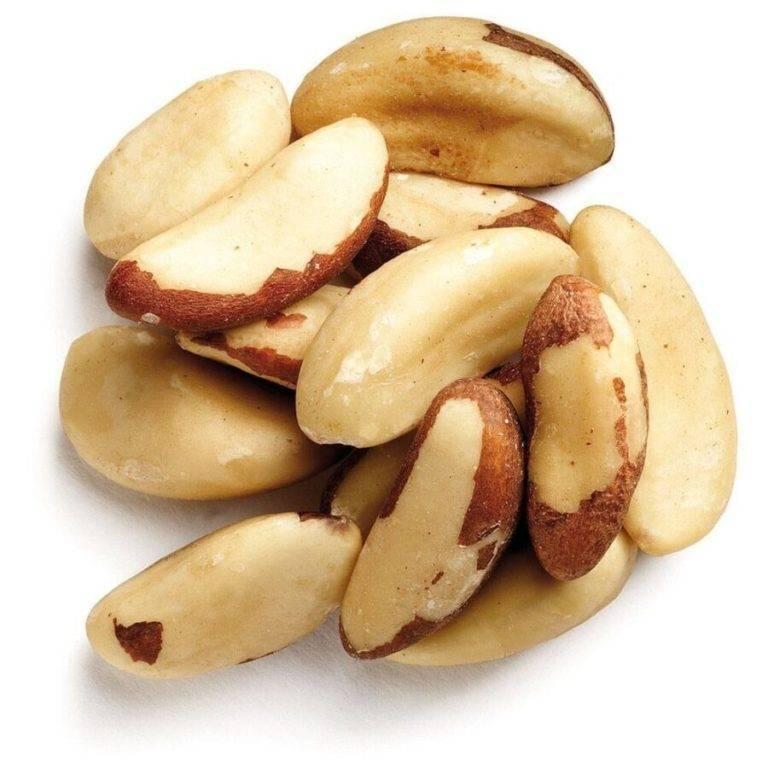 Польза и вред бразильского ореха для здоровья человека, безопасная дозировка, сферы использования