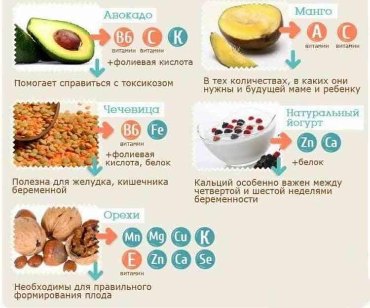 Кедровые орехи при беременности: польза или вред. можно ли кушать?