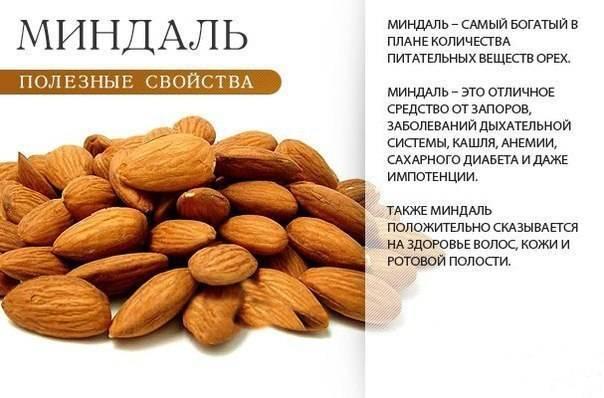 Как влияют орехи на артериальное давление? какие виды повышают и понижают его показатели?