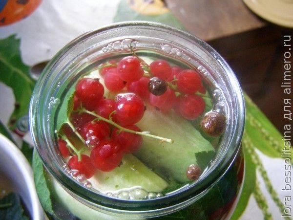 Вкусный густой джем из сока красной смородины: 6 простых рецептов