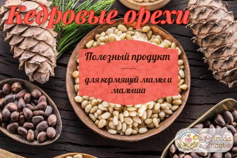 Список разрешенных орехов при грудном вскармливании | компетентно о здоровье на ilive