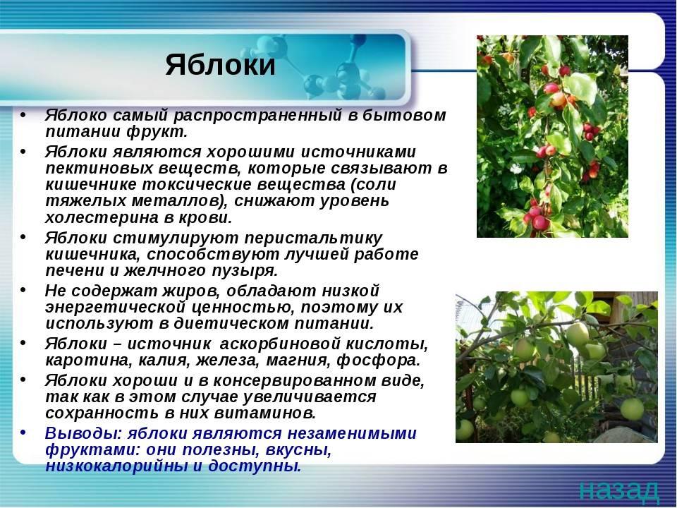 Описание сорта грецкого ореха кардинал и особенности его выращивания