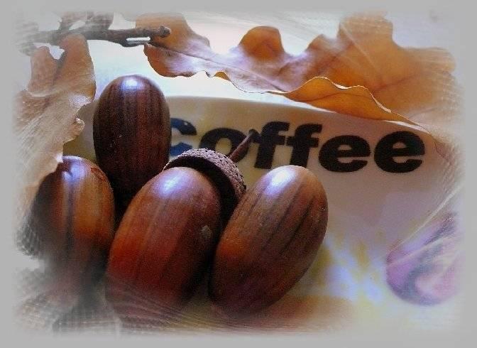 Кофе из желудей: полезные свойства и вред   польза и вред