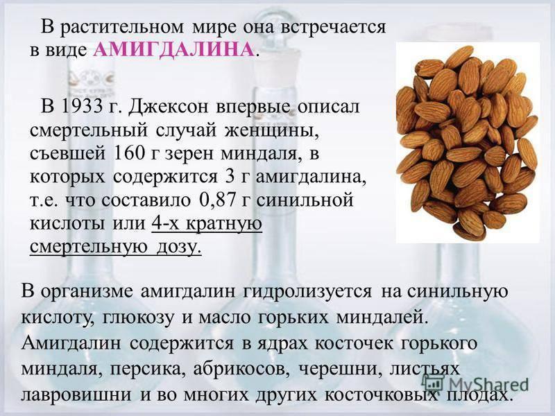 Как правильно употреблять в пищу миндаль с кожурой и без: сколько нужно кушать в день, много ли орехов можно съесть за один раз и за сутки в штуках, и дневная норма