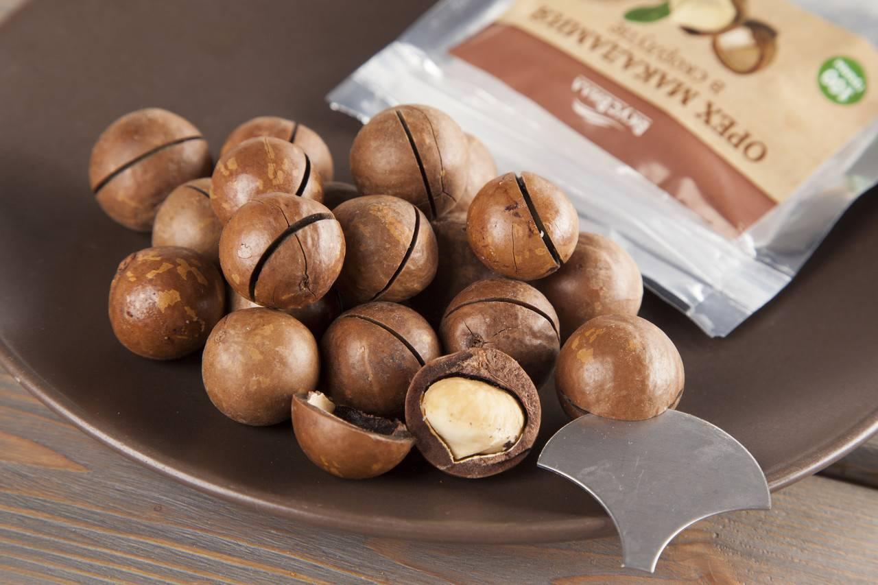 Орех макадамия: польза и вред для организма, калорийность - орех эксперт