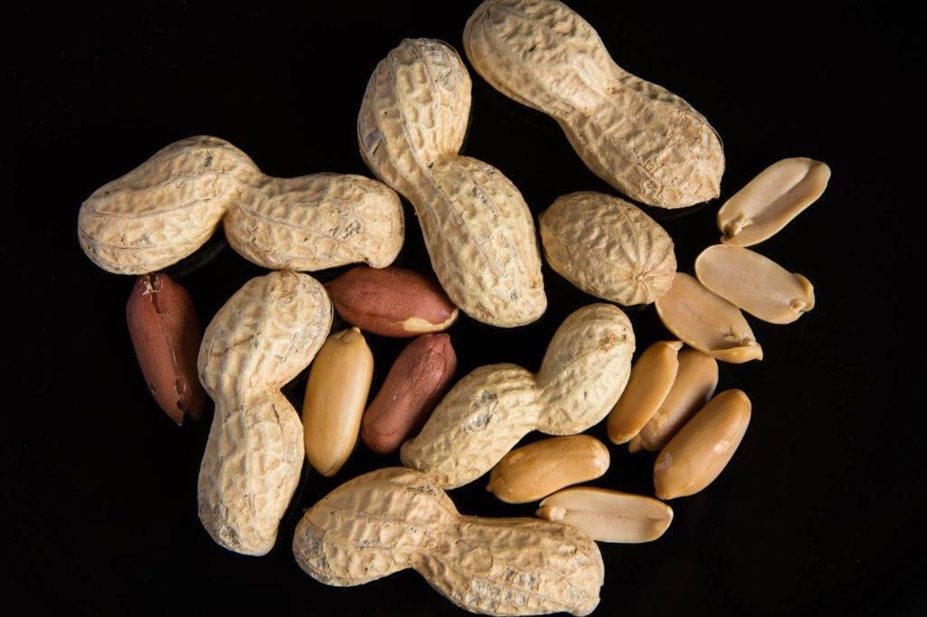 Арахис - описание, полезные и вредные свойства, состав, калорийность, рецепты, фото