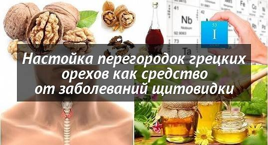 """Грецкий орех – полезные свойства, состав, вред, применение в лечебных целях   медицина на """"добро есть!"""""""