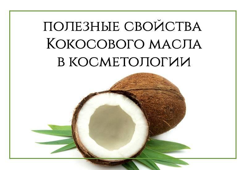 Полезные свойства кокоса | волшебная eда.ру