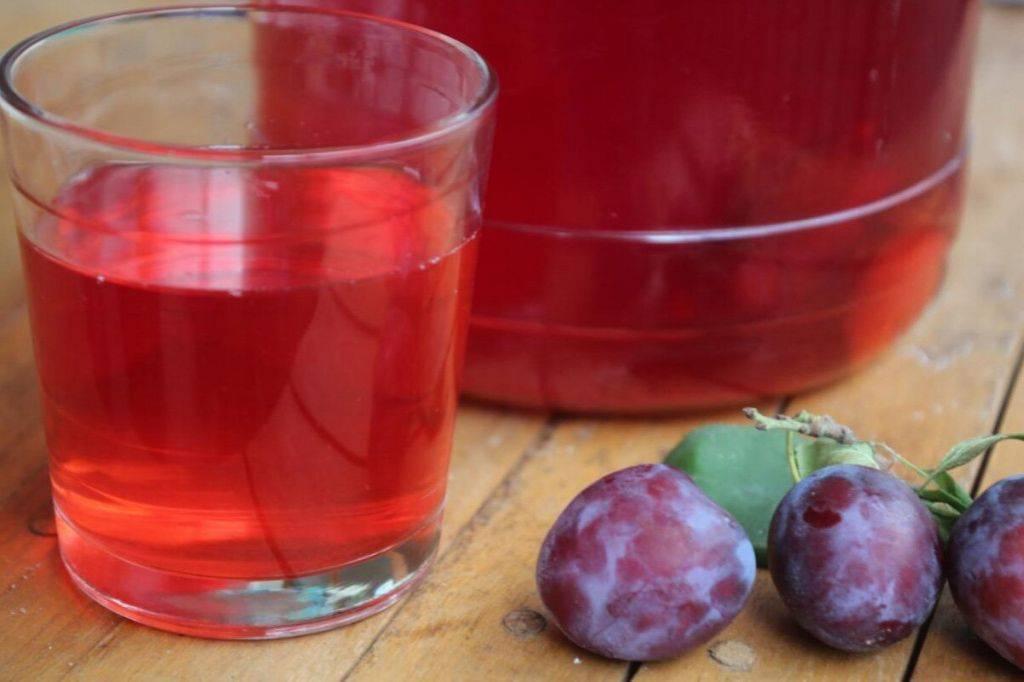 Готовим полезный напиток — компот из целых слив с косточкой