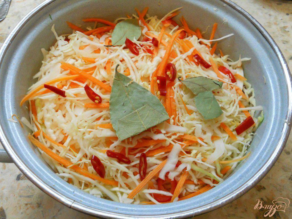 Маринованная капуста быстрого приготовления: быстро и очень вкусно