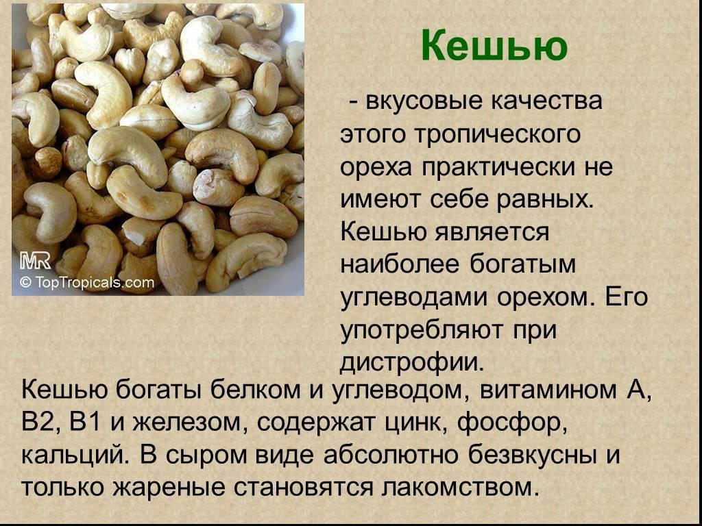 Чем полезны орехи кешью для организма человека, сколько нужно есть