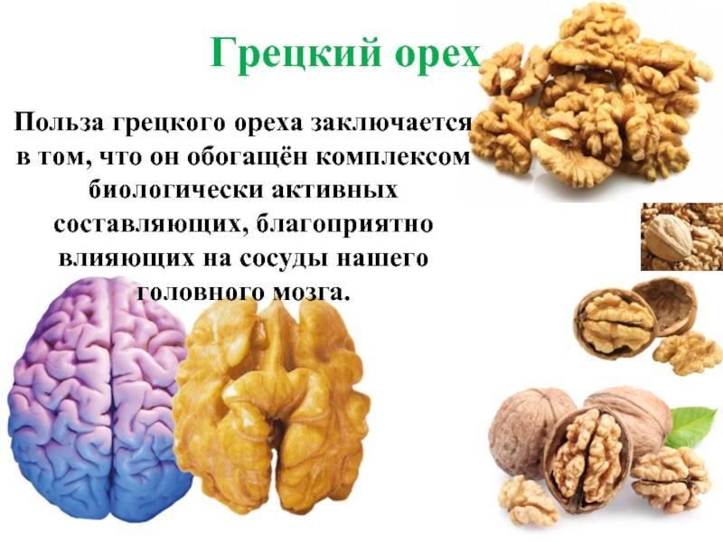 Грецкий орех: польза, вред, калорийность, лечебные свойства