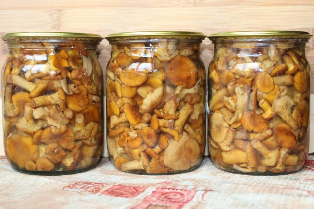 Как мариновать грибы: рецепты с фото