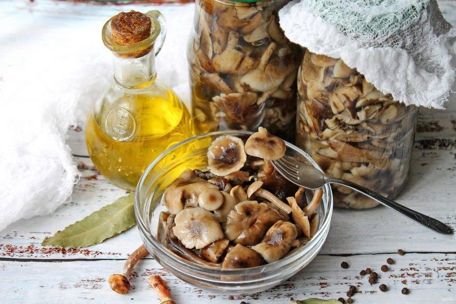 Как замариновать грибы: 4 фото рецепта