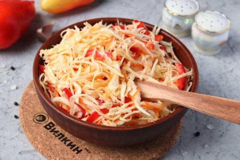 Маринованная капуста с болгарским перцем быстрого приготовления – 6 рецептов - rus-womens