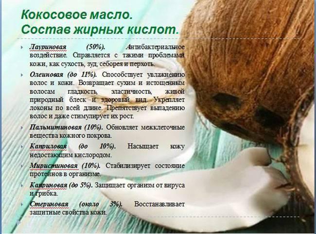 Кокосовый орех или кокос: полезен или вреден? калорийность, польза и вред кокоса, и его влияние на здоровье детей и взрослых - автор екатерина данилова - журнал женское мнение